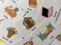 Lots to Spot Flashcards