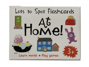 Lots to Spot Flashcards - At Home
